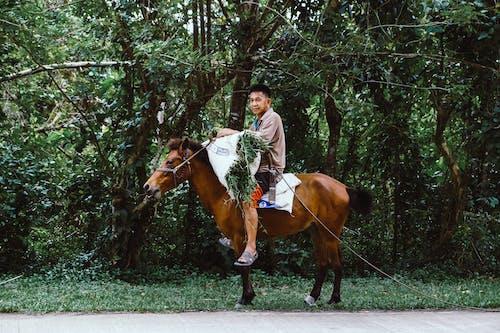 Man in Brown Long Sleeve Shirt Sitting on Brown Horse