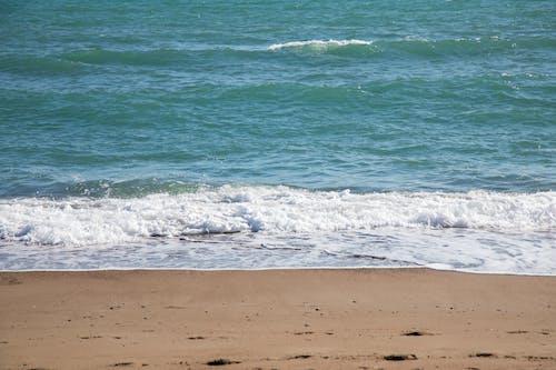 Foto d'estoc gratuïta de aigua, Costa, escuma, litoral