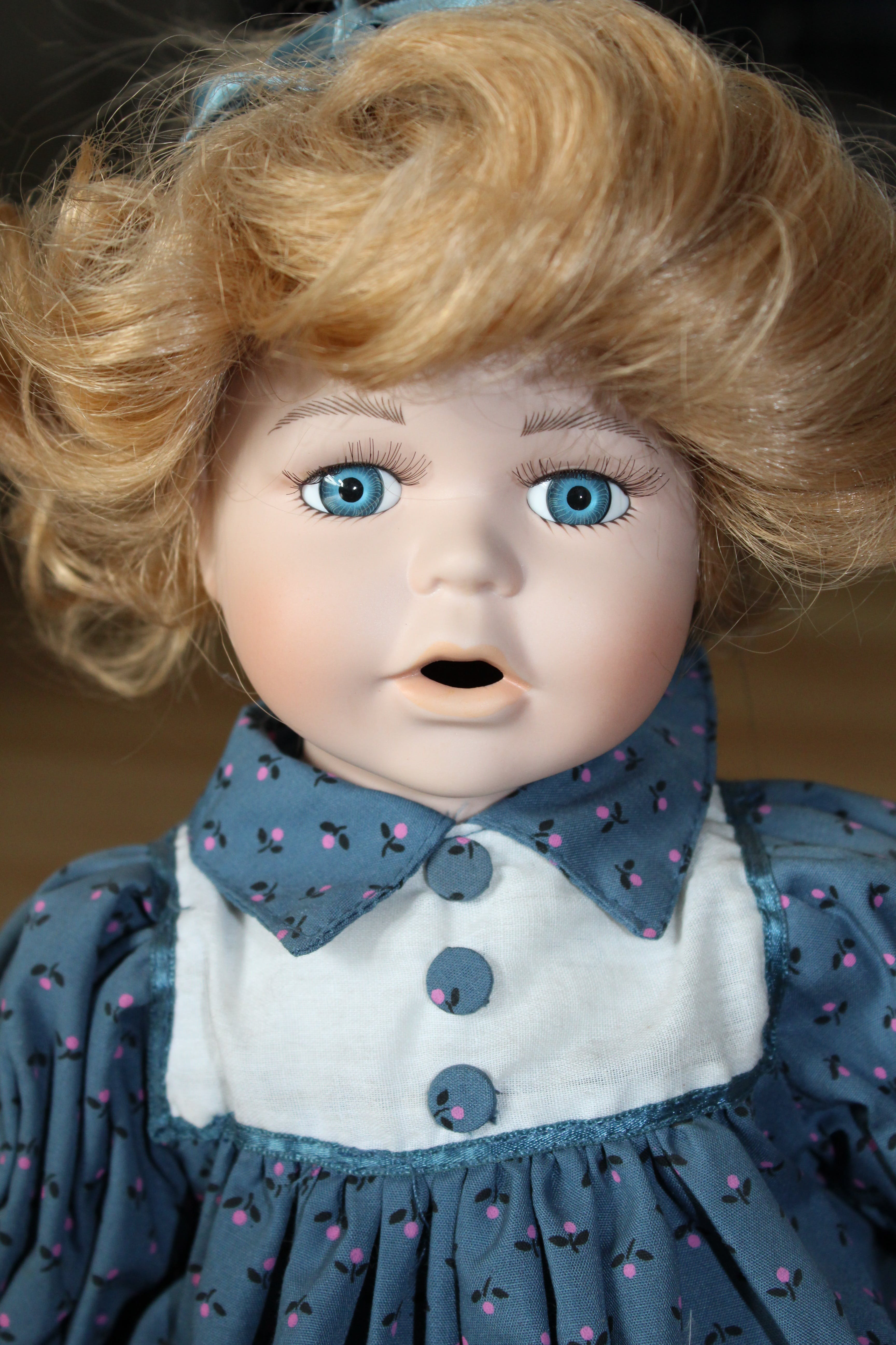 Doll on Blue Floral Polo Dress