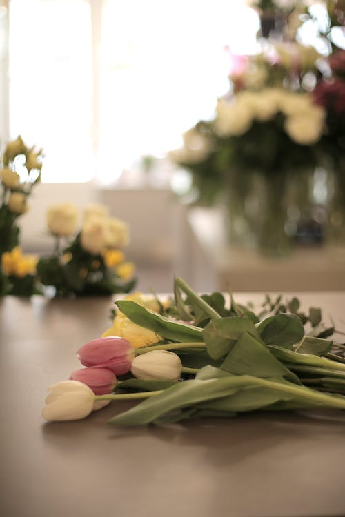 Photo Of Tulips On Table