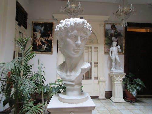 Immagine gratuita di arte, busto della testa, interior design