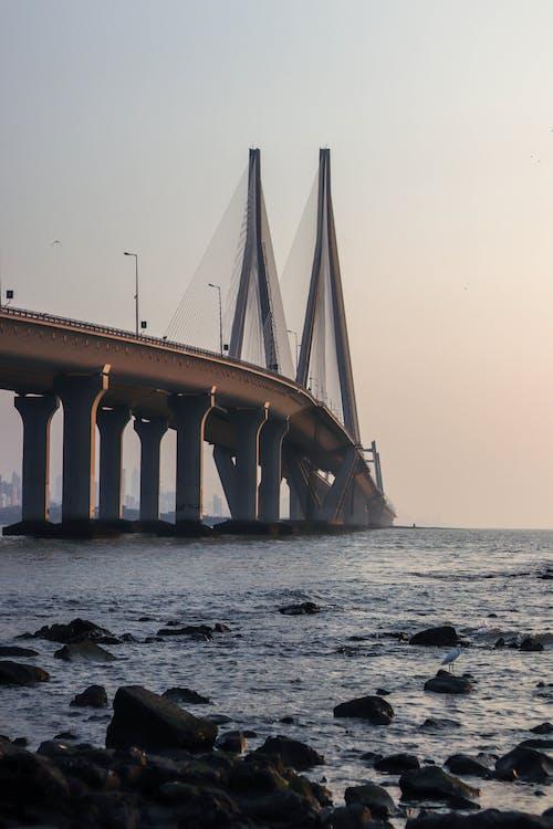 ブリッジ, ムンバイ, 夕暮れ, 夜明けの無料の写真素材