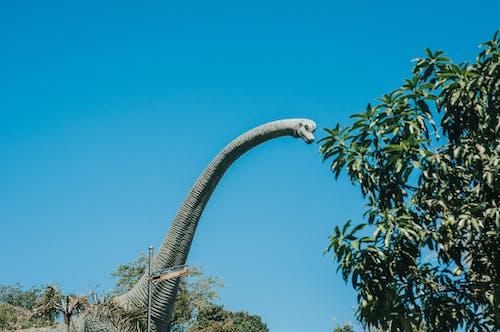 Dinosaur Attraction Under Blue Sky