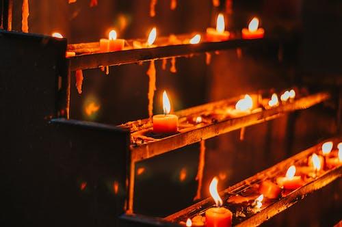 Fotos de stock gratuitas de ardiente, iluminado, llama, Luces de vela