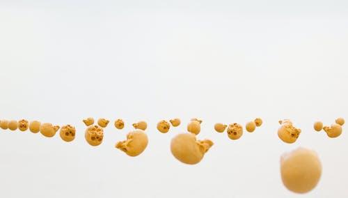 ぷかぷか, 浮遊, 骨格の無料の写真素材