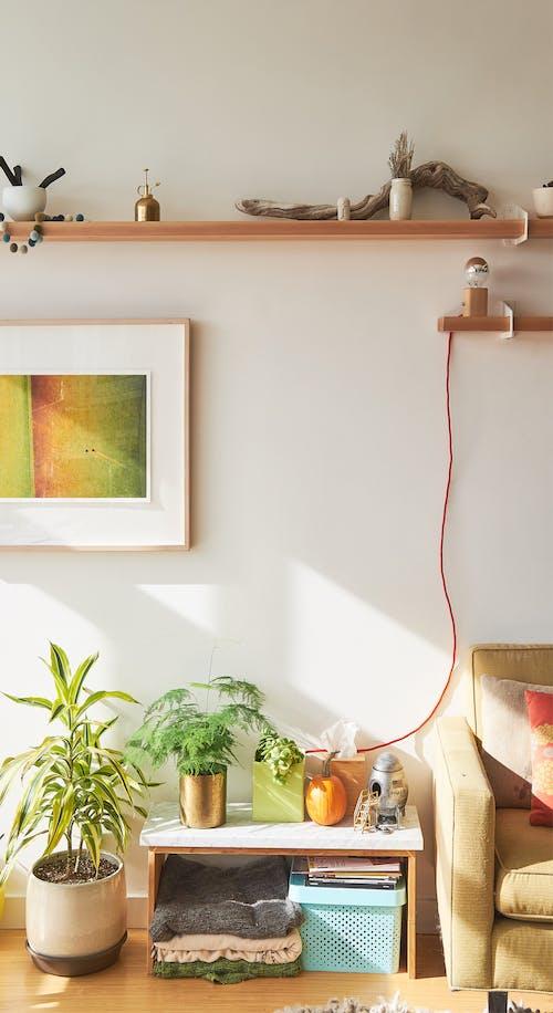 Gratis lagerfoto af ejerlejlighed, grovemade, lampe, lejlighed