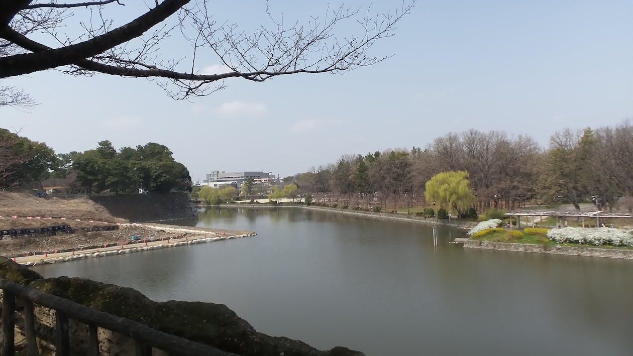 Free stock photo of japan, Nagoya