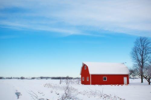 Immagine gratuita di alberi, azienda agricola, case rosse, cielo
