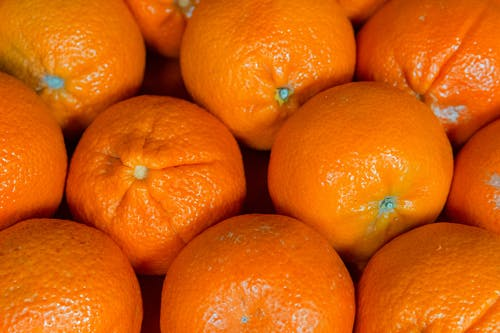 Close Up Photo Of Orange Fruits