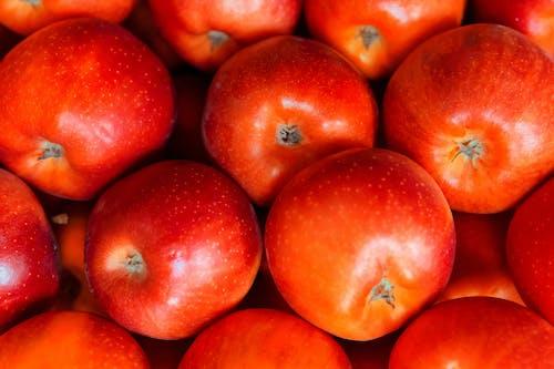 Безкоштовне стокове фото на тему «достаток, здоровий, їжа, свіжий»
