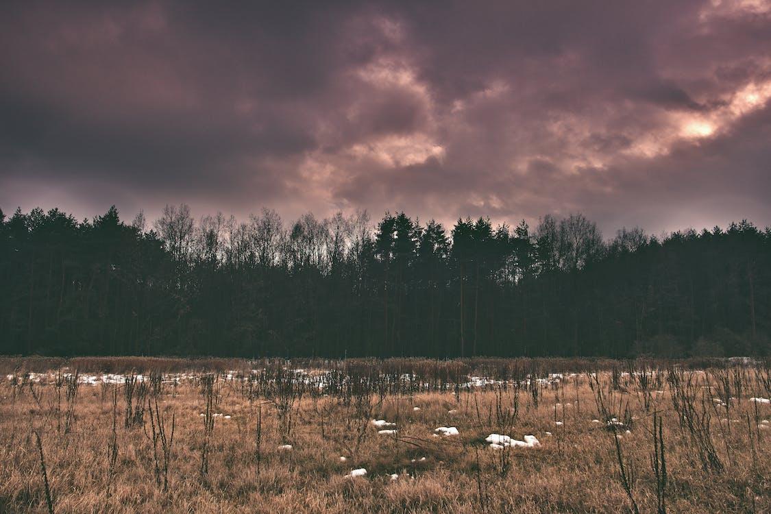anh hùng ca, bầu trời, cánh đồng