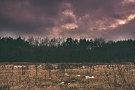 sky, red, field
