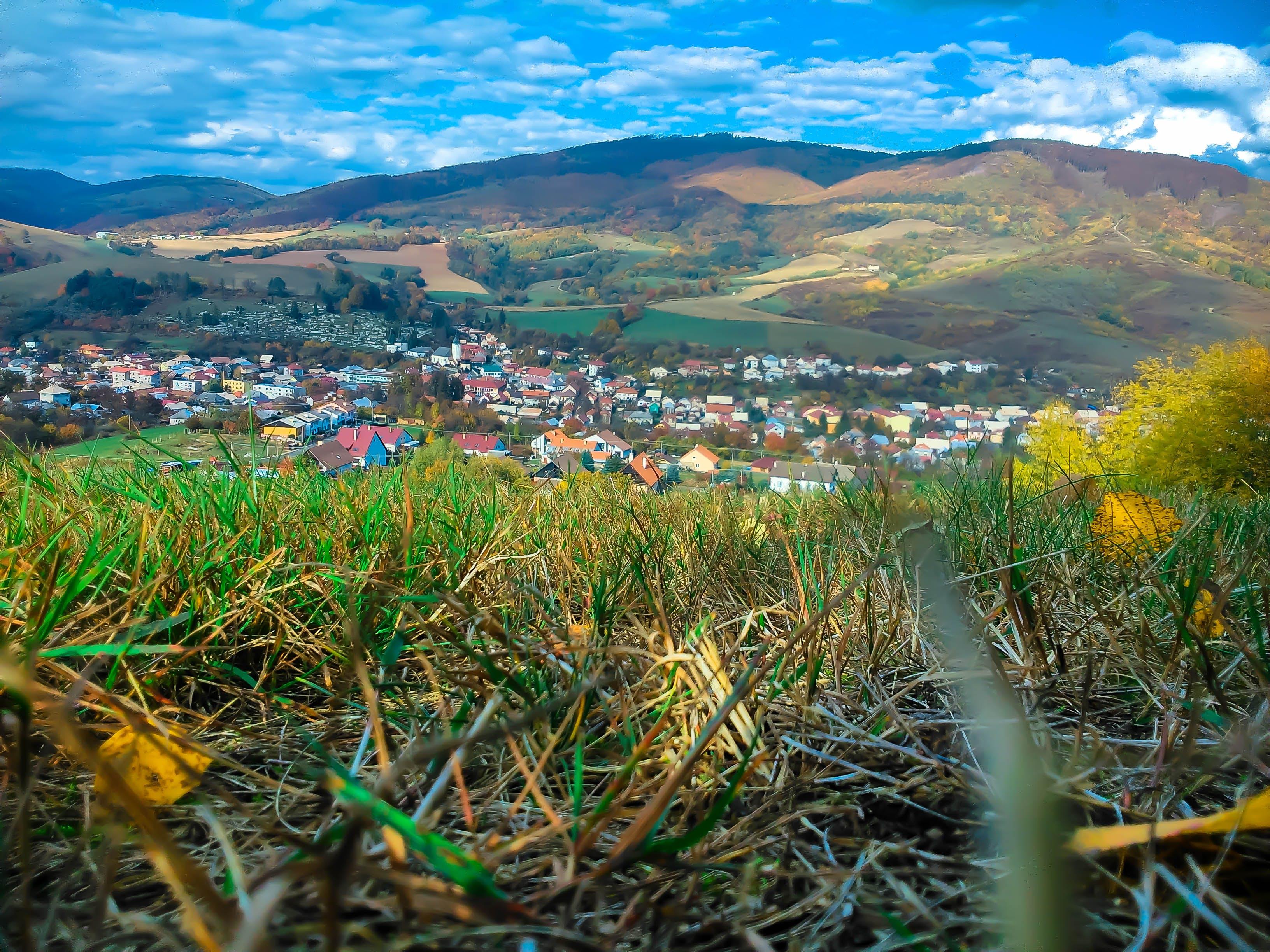 Kostnadsfri bild av åkermark, äng, bergen, bete
