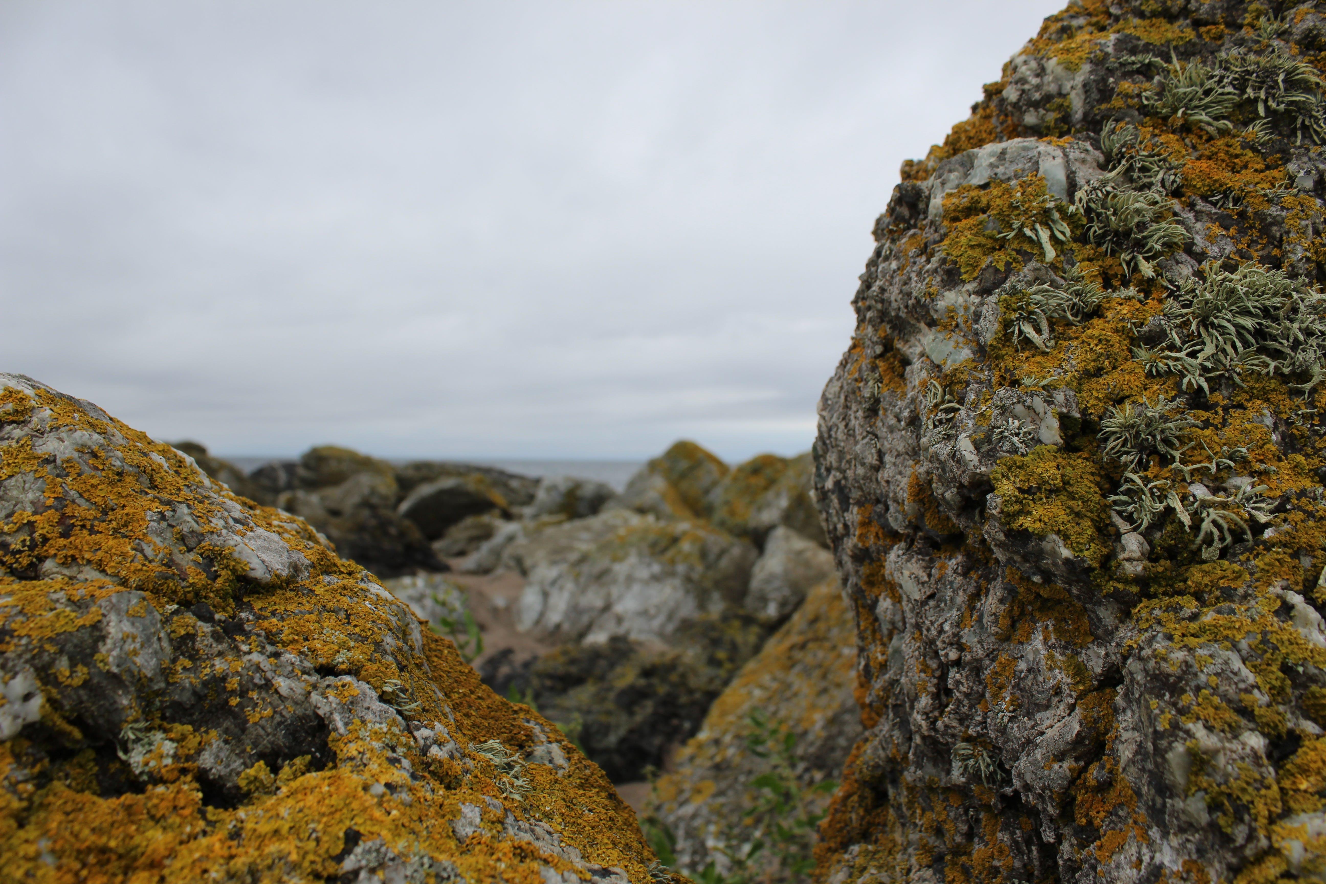 Free stock photo of clouds, looking between the rocks, Mossy rocks, orange