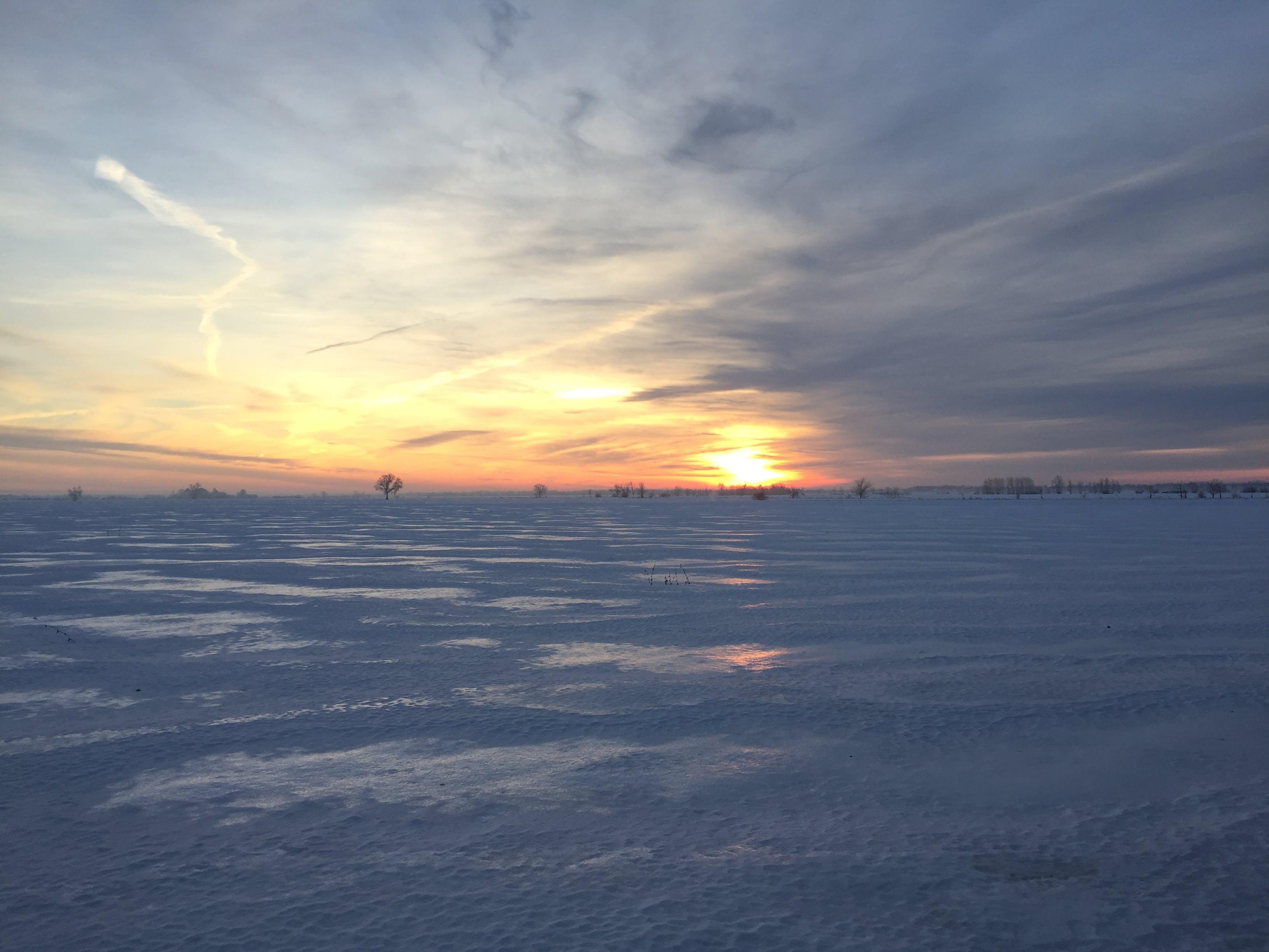 Free stock photo of landscape, ottawa greenbelt, snow covered field, sunrise
