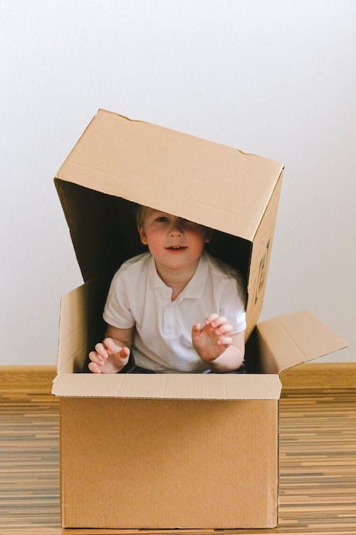 享受, 兒童, 包裹, 可愛 的 免費圖庫相片