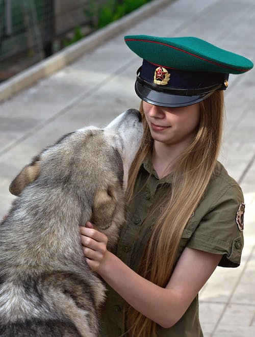 Woman Holding Adult Silver Siberian Husky