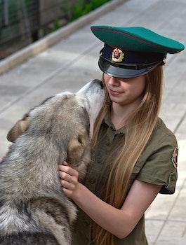 Free stock photo of girl, animal, dog, pet