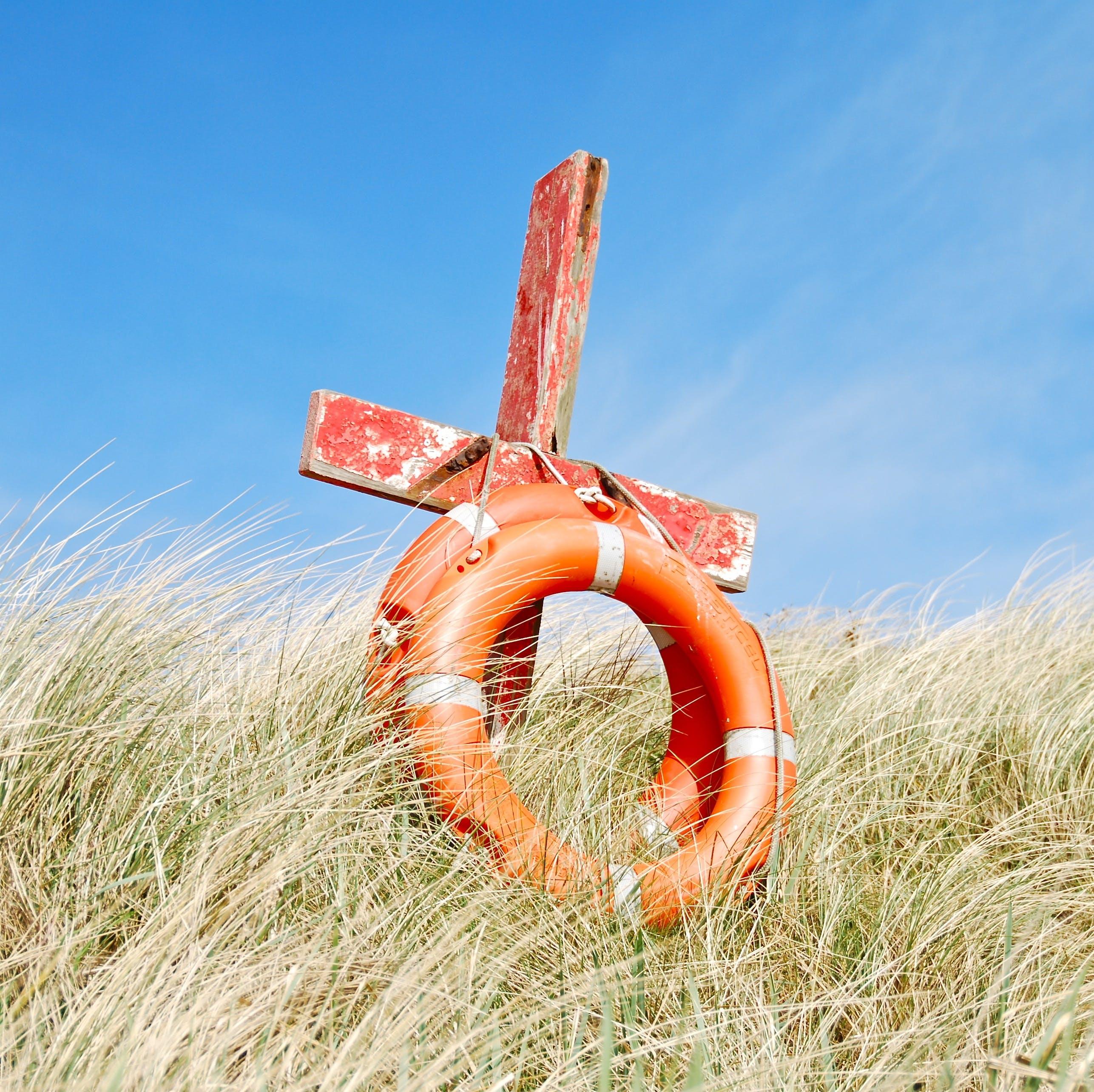Orange Buoy on Grass