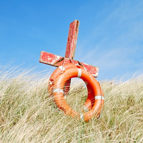 Безкоштовне стокове фото на тему «cogon трава, Безпека, безпечний, блакитне небо»
