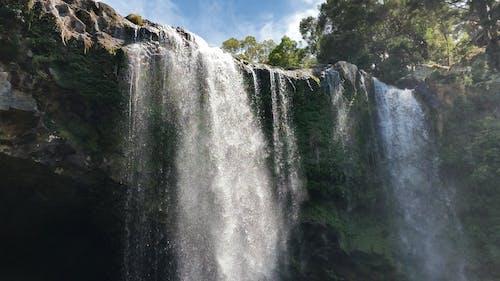 ニュージーランド, 滝, 白, 緑の無料の写真素材