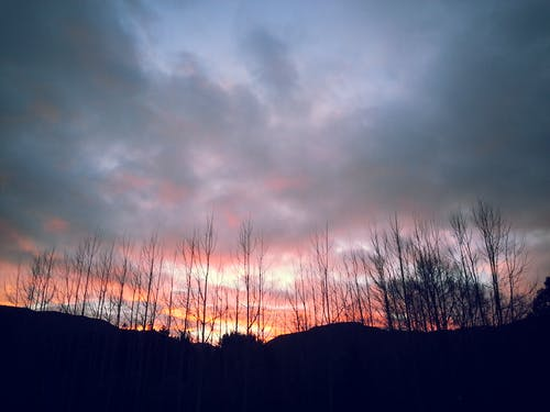 Free stock photo of black, clouds, orange, skyline