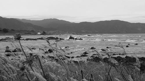Free stock photo of black and white, church, coast, dark