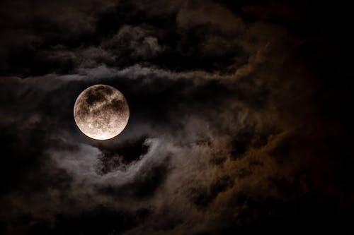 天文學, 晚上, 月亮, 月圓 的 免費圖庫相片