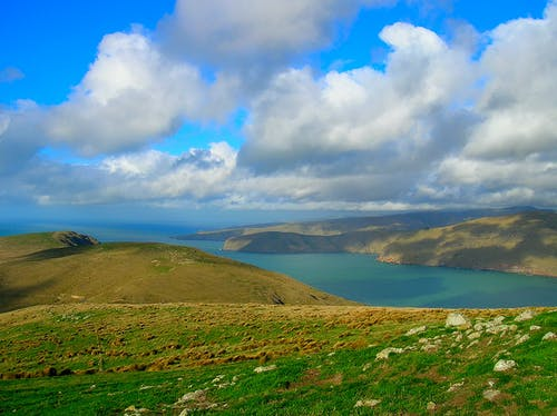 Foto profissional grátis de azul, canal, ecológico, Nova Zelândia