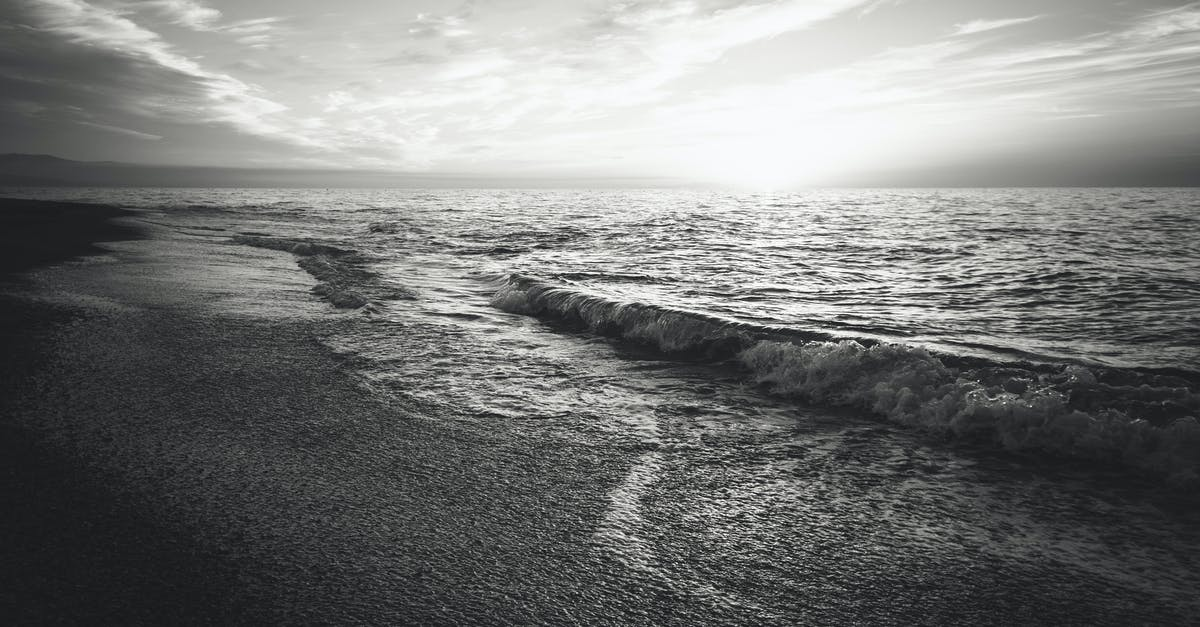 Free stock photo of beach black and white ocean