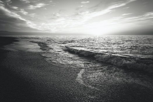 Free stock photo of sea, black-and-white, sunset, beach