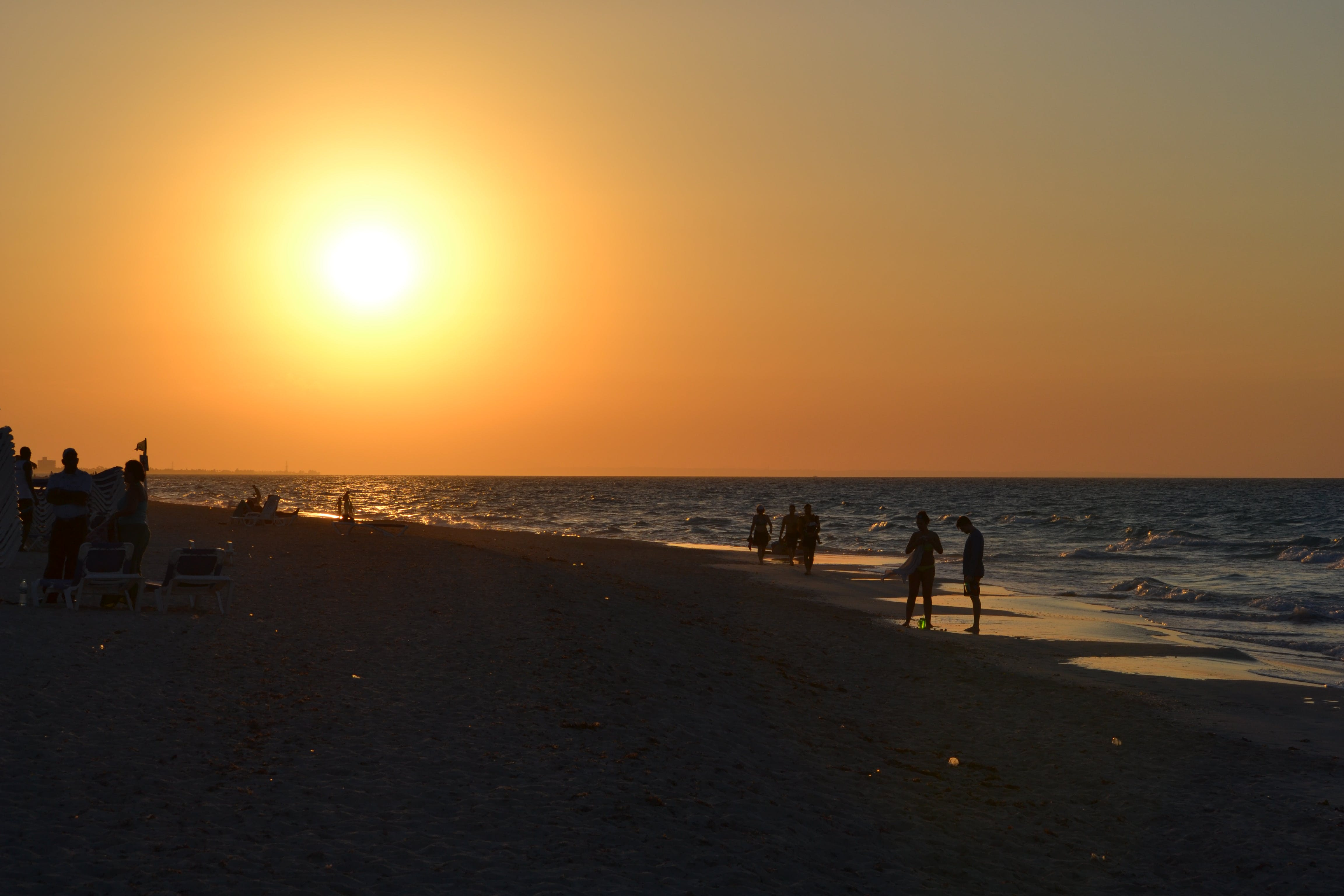 Several People Standing on Seashore during Sunset