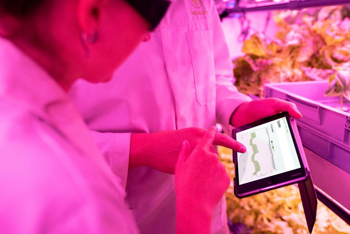 Kostnadsfri bild av data, digital tablett, forskning