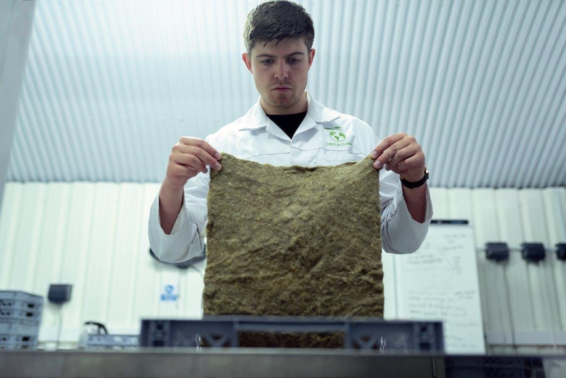 Scientist Checking Crops in Laboratory