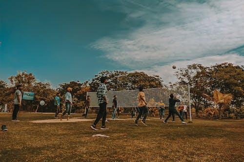 Fotos de stock gratuitas de cultura de equipo, trabajo en equipo, voleibol