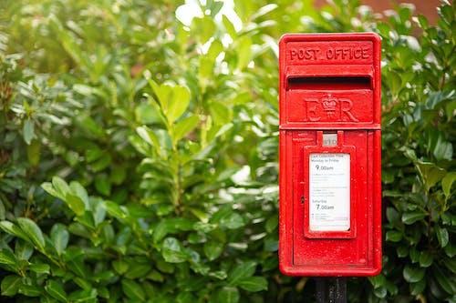 Immagine gratuita di cassetta delle lettere, cassetta postale, giardino