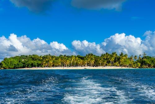 ada, ağaçlar, cennet, deniz içeren Ücretsiz stok fotoğraf