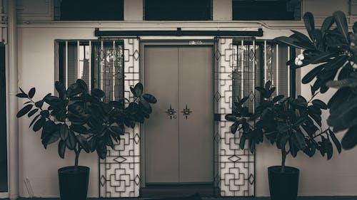 Kostnadsfri bild av anläggning, arkitektur, dörr, grind