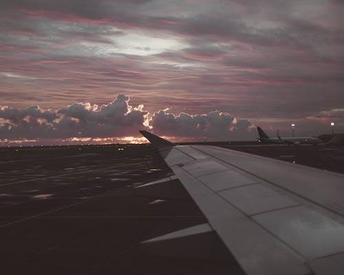 Kostnadsfri bild av fluga, flyg, flygplan, moln