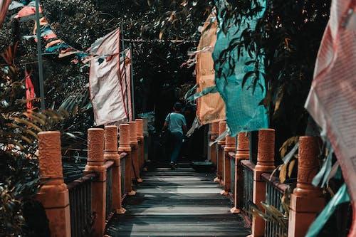 Kostnadsfri bild av arkitektur, blå, bro, flagga