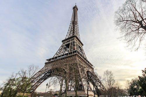 Foto d'estoc gratuïta de ciutat, parís, tarda, torre eiffel