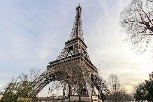 Free stock photo of city, eiffel tower, paris, spring