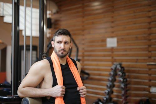 Kostenloses Stock Foto zu bizeps, bodybuilding, bullig