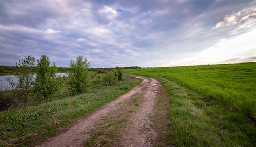 Δωρεάν στοκ φωτογραφιών με αγρόκτημα, ανάπτυξη, άστρωτος δρόμος, γήπεδο