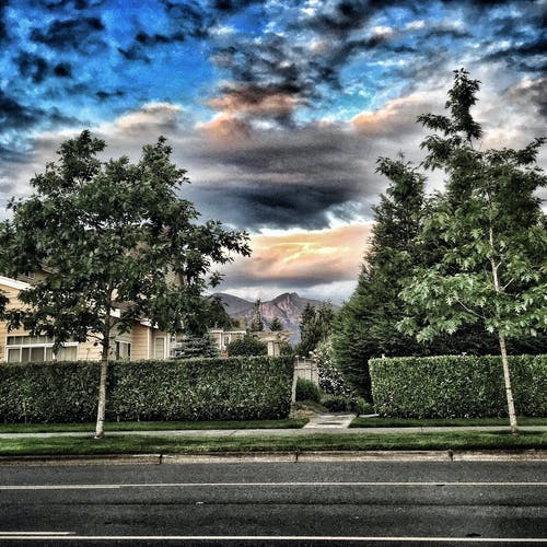 市景, 樹木, 街 的 免費圖庫相片