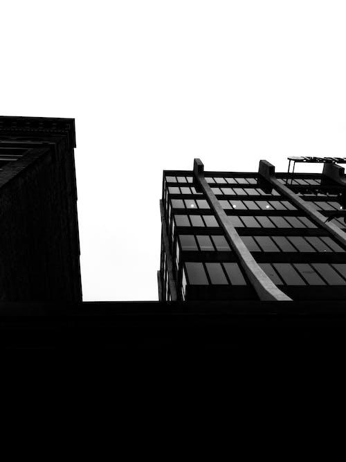 건축, 건축 양식, 모노톤의, 미니멀의 무료 스톡 사진