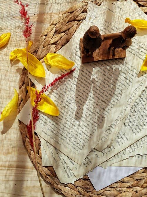 オーガニック, シート, ストーリー, チューリップの無料の写真素材
