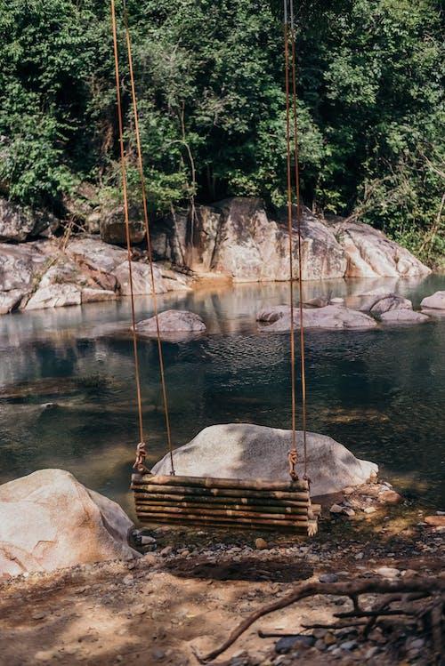 Swing on calm lake shore