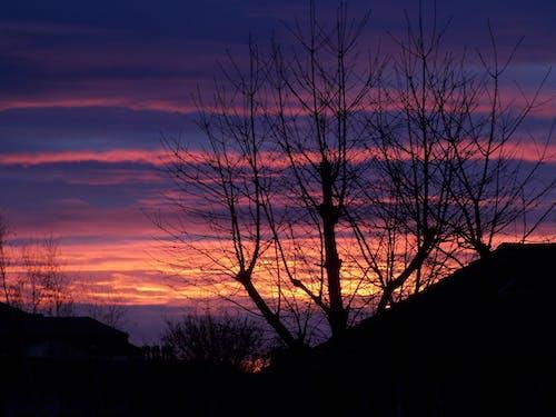Gratis lagerfoto af aften, bagbelyst, farve, himmel