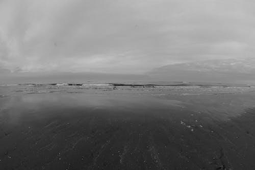 Free stock photo of beach, grayscale, sea